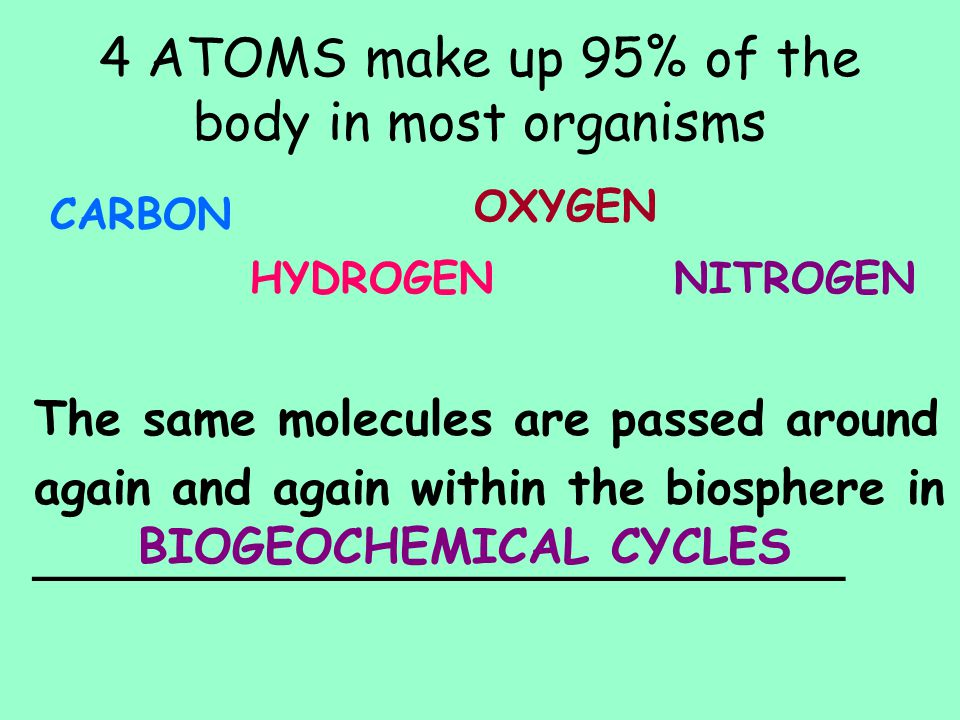 4 ATOMS make up 95% of the body in most organisms CARBON HYDROGEN OXYGEN NITROGEN The same molecules are passed around again and again within the bios