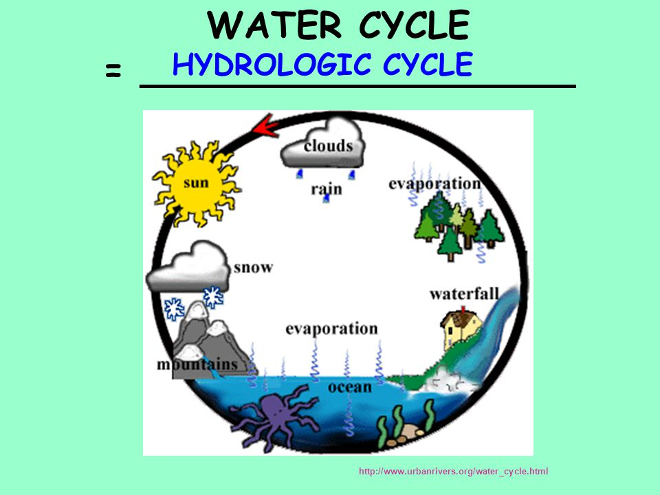 WATER CYCLE = ___________________ HYDROLOGIC CYCLE http://www.urbanrivers.org/water_cycle.html