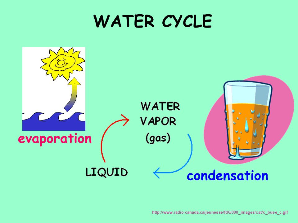 WATER CYCLE evaporation condensation http://www.radio-canada.ca/jeunesse/fd6/000_images/cat/c_buee_c.gif