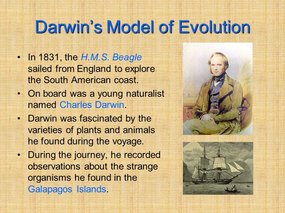 Darwin's Model of Evolution In 1831, the H.M.S.