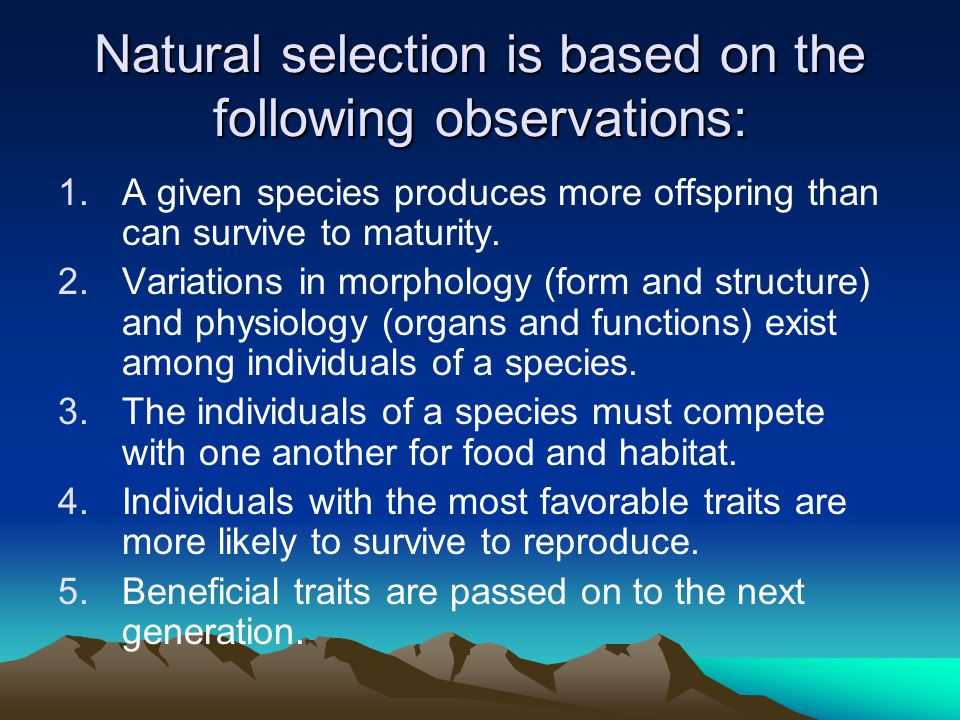 Natural selection is based on the following observations: 1.A given species produces more offspring than can survive to maturity.