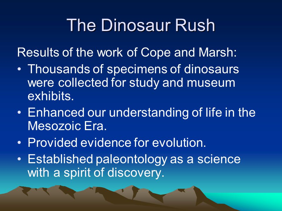 The Dinosaur Rush Results of the work of Cope and Marsh: Thousands of specimens of dinosaurs were collected for study and museum exhibits. Enhanced ou