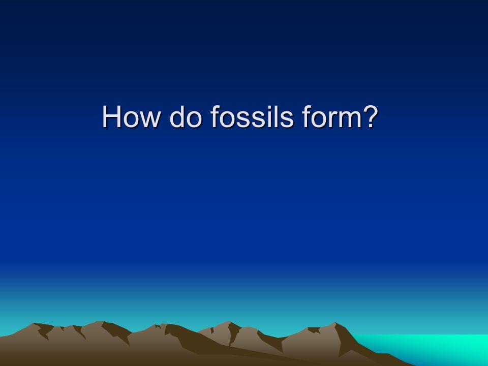 Sediment Sediment is deposited worldwide.