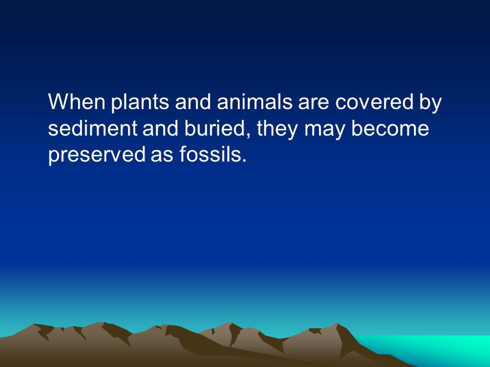 When plants and animals are covered by sediment and buried, they may become preserved as fossils.