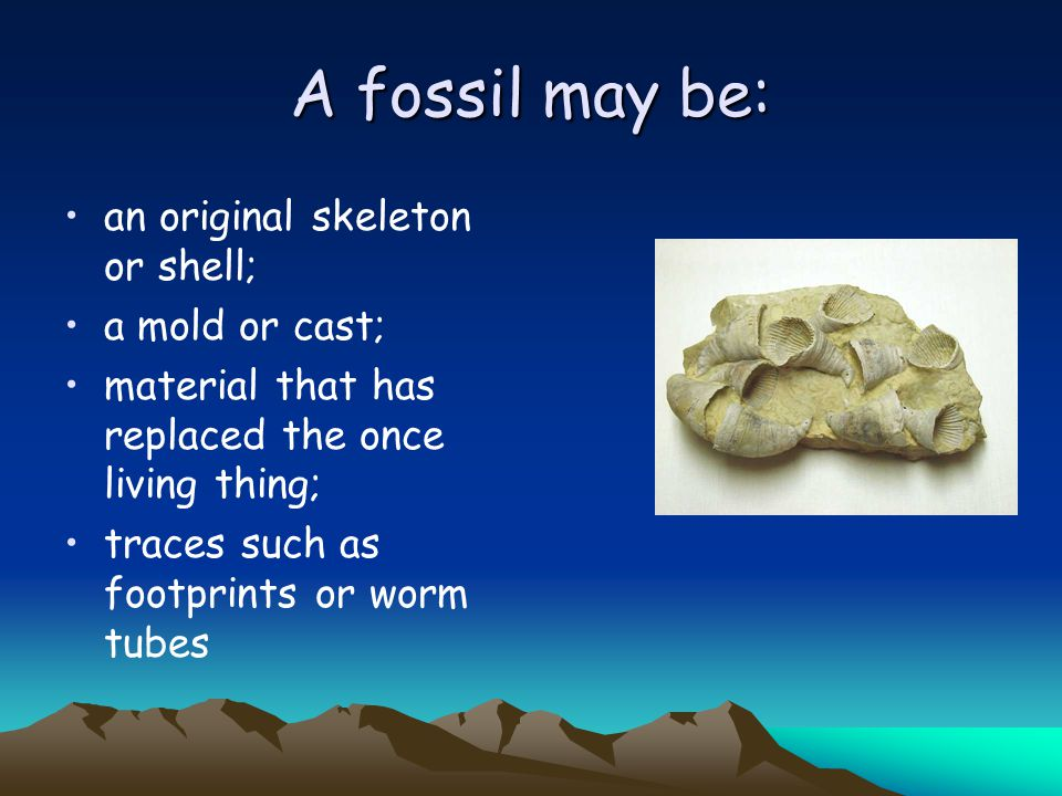 More on trace fossils Burrows or borings – Spaces dug out by living things and preserved as is or filled in