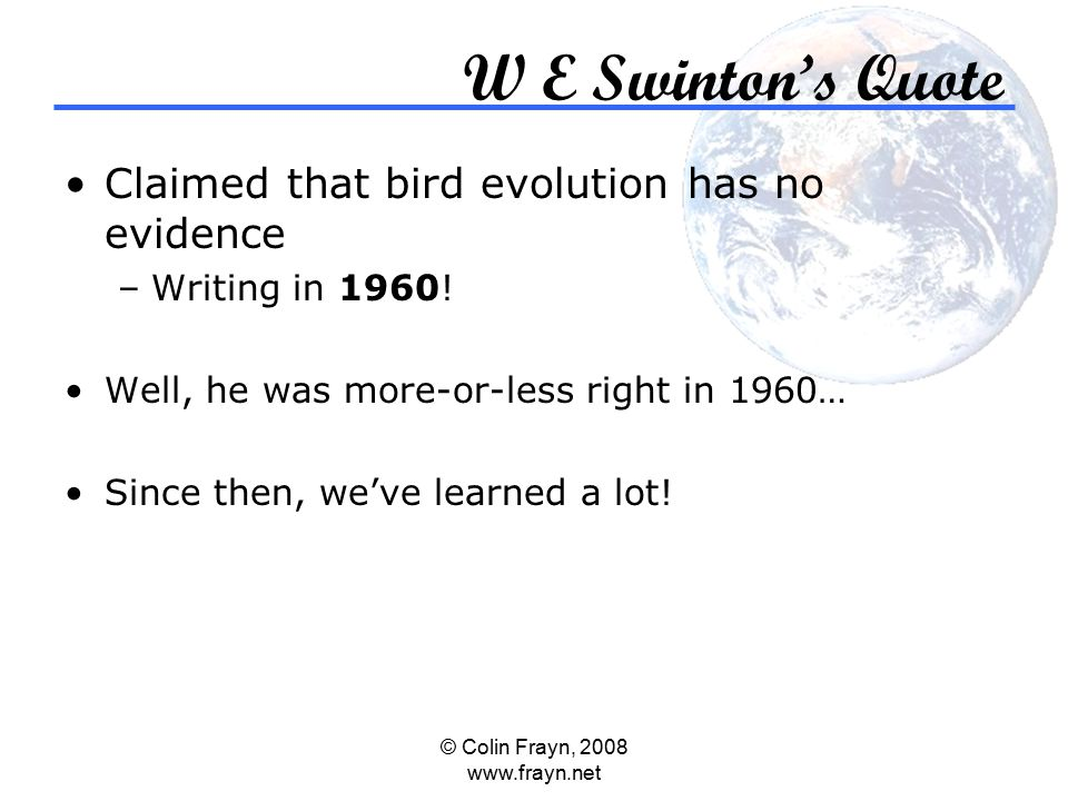 © Colin Frayn, 2008 www.frayn.net W E Swinton's Quote Claimed that bird evolution has no evidence –Writing in 1960.