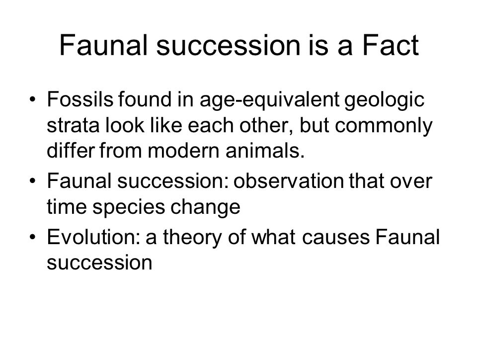 Faunal succession is a Fact Fossils found in age-equivalent geologic strata look like each other, but commonly differ from modern animals. Faunal succ