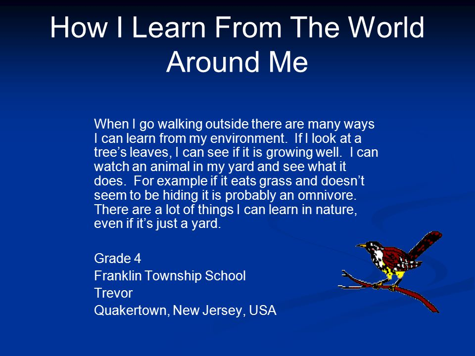 How I Learn From The World Around Me When I go walking outside there are many ways I can learn from my environment.