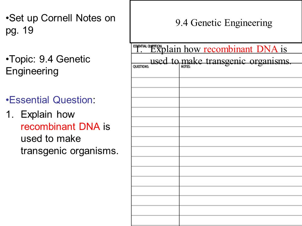 9.1 Manipulating DNA Set up Cornell Notes on pg. 19 Topic: 9.4 Genetic Engineering Essential Question: 1.Explain how recombinant DNA is used to make t