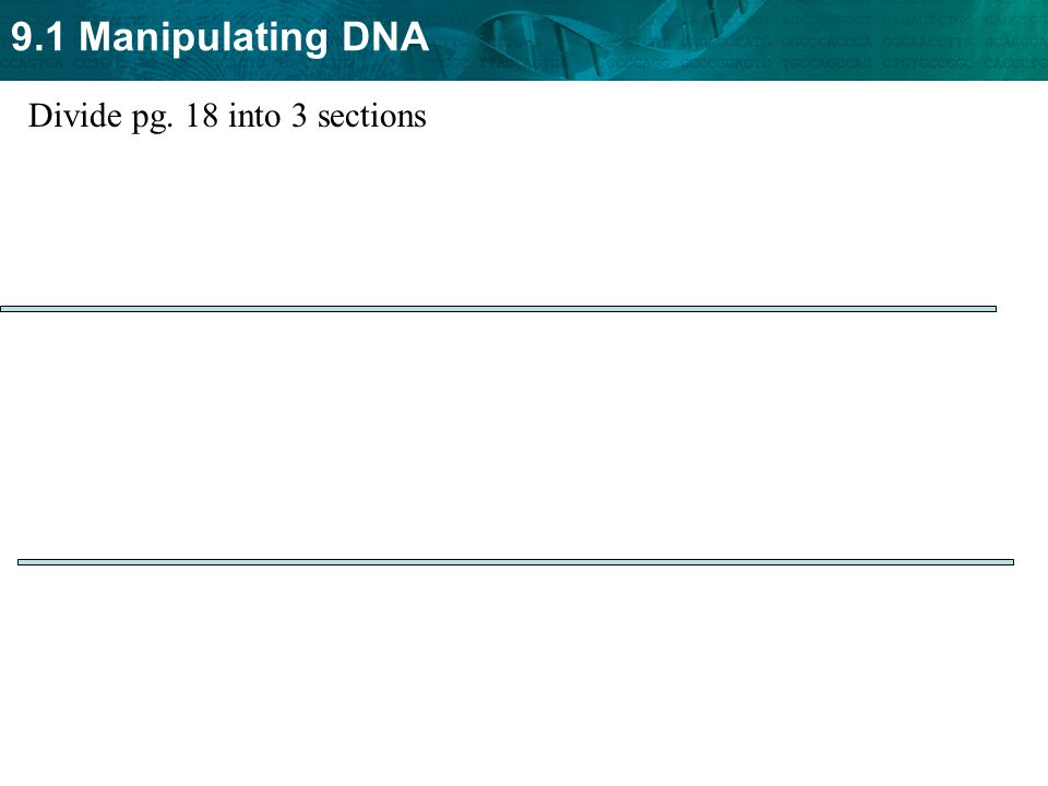 9.1 Manipulating DNA Divide pg. 18 into 3 sections