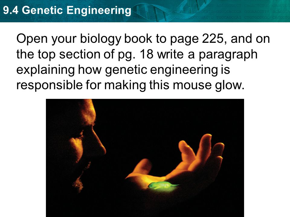 9.4 Genetic Engineering Open your biology book to page 225, and on the top section of pg. 18 write a paragraph explaining how genetic engineering is r
