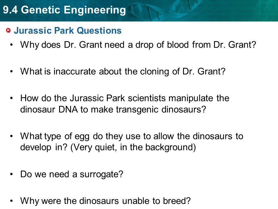 9.4 Genetic Engineering Jurassic Park Questions Why does Dr. Grant need a drop of blood from Dr. Grant? What is inaccurate about the cloning of Dr. Gr