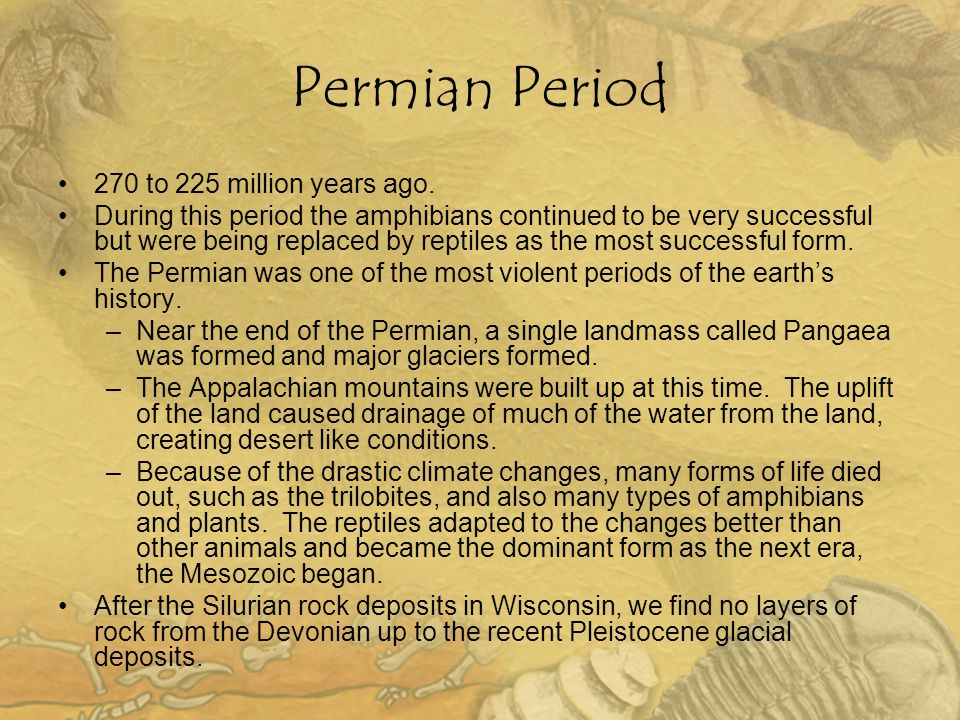 Permian Period 270 to 225 million years ago. During this period the amphibians continued to be very successful but were being replaced by reptiles as