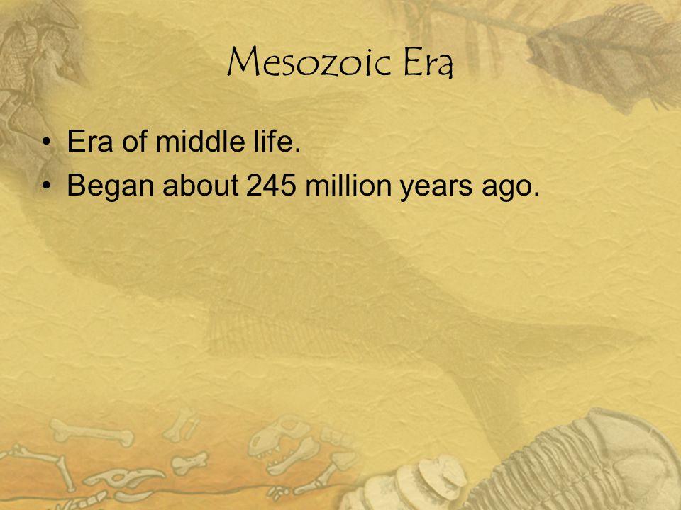 Mesozoic Era Era of middle life. Began about 245 million years ago.
