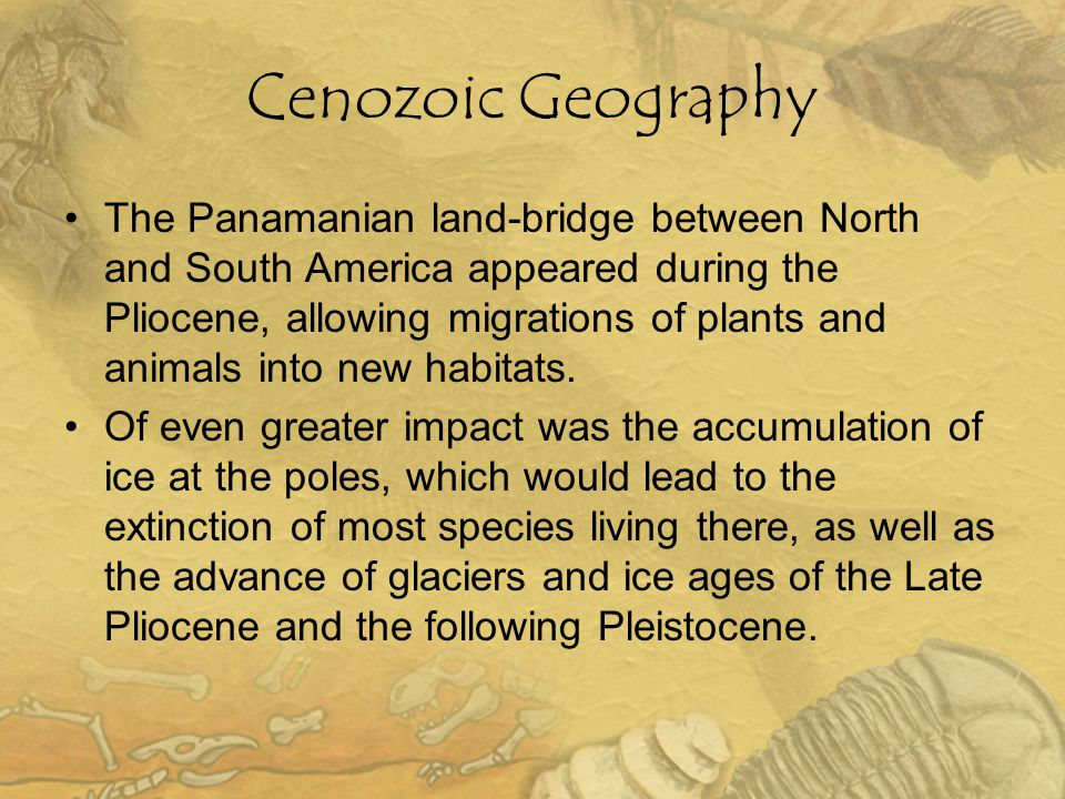 Cenozoic Geography The Panamanian land-bridge between North and South America appeared during the Pliocene, allowing migrations of plants and animals