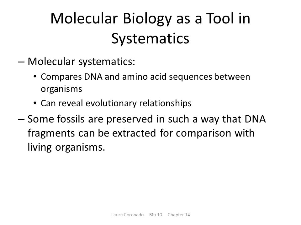 Molecular Biology as a Tool in Systematics – Molecular systematics: Compares DNA and amino acid sequences between organisms Can reveal evolutionary re