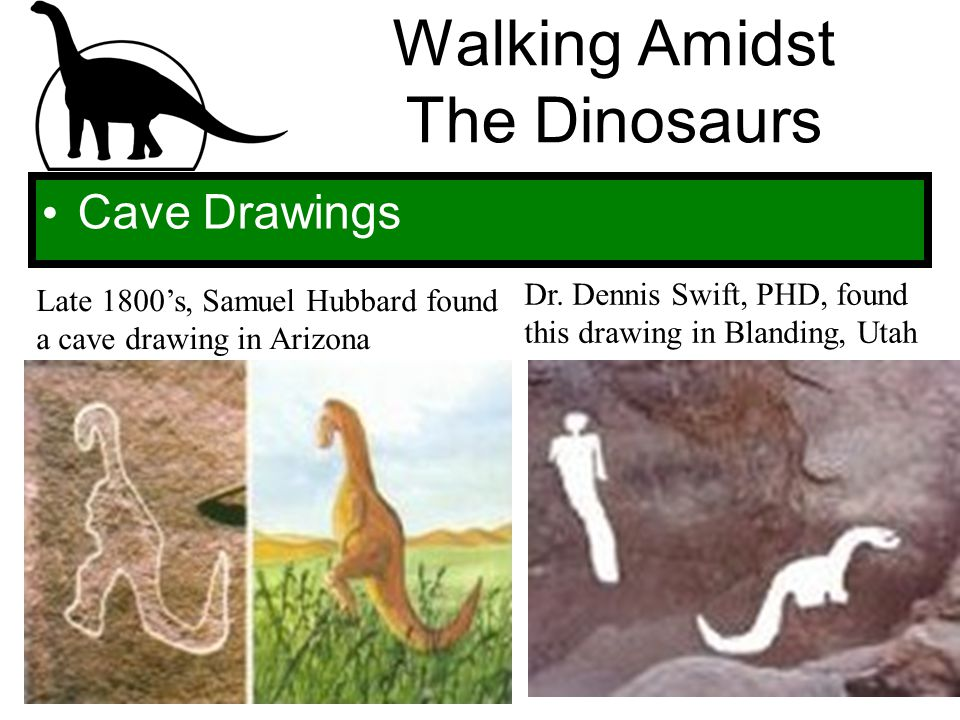Walking Amidst The Dinosaurs Cave Drawings Late 1800's, Samuel Hubbard found a cave drawing in Arizona Dr. Dennis Swift, PHD, found this drawing in Bl