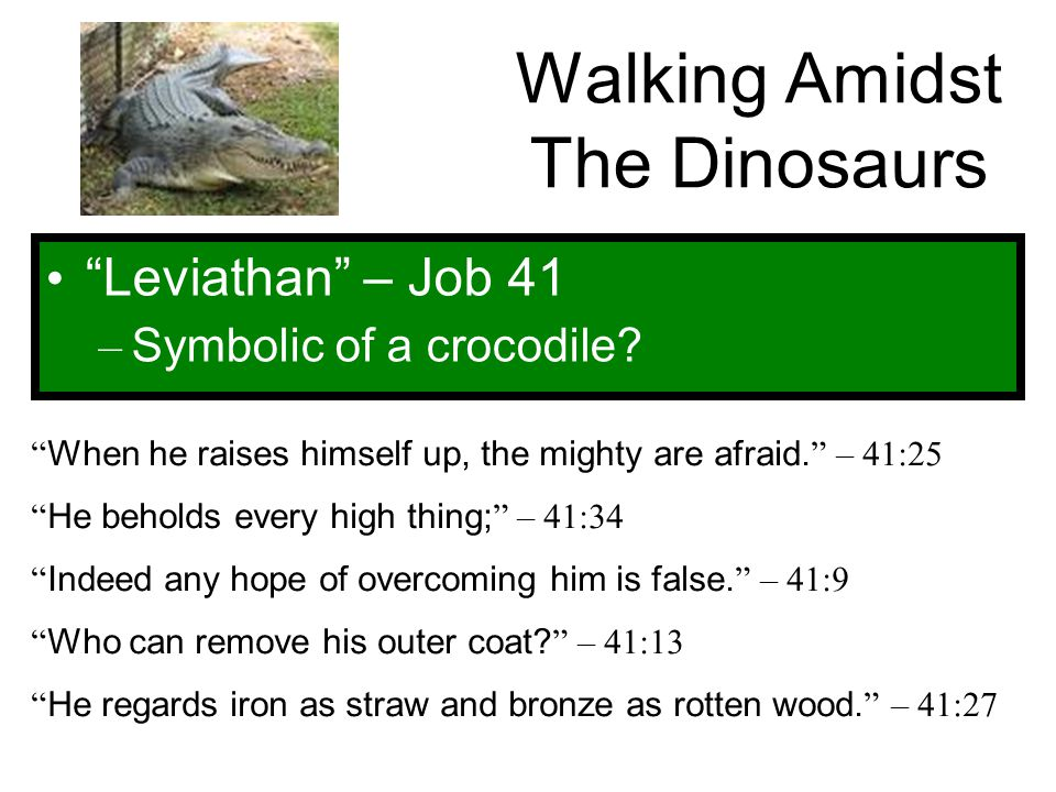 """Walking Amidst The Dinosaurs """"Leviathan"""" – Job 41 – Symbolic of a crocodile? """" When he raises himself up, the mighty are afraid. """" – 41:25 """" He behold"""