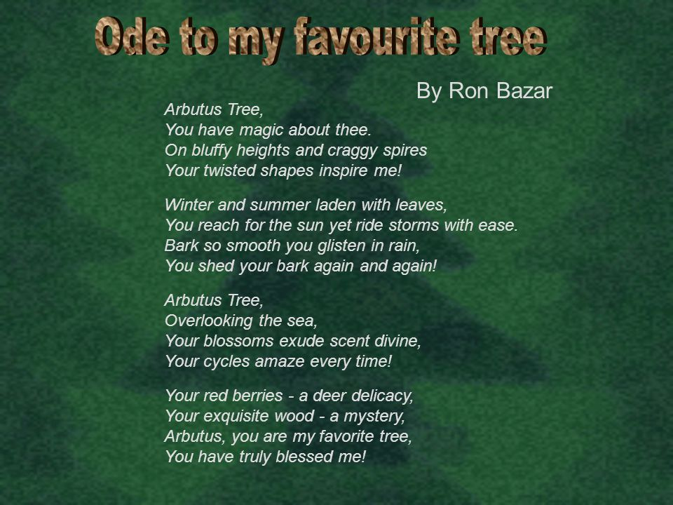 By Ron Bazar Arbutus Tree, You have magic about thee. On bluffy heights and craggy spires Your twisted shapes inspire me! Arbutus Tree, Overlooking th