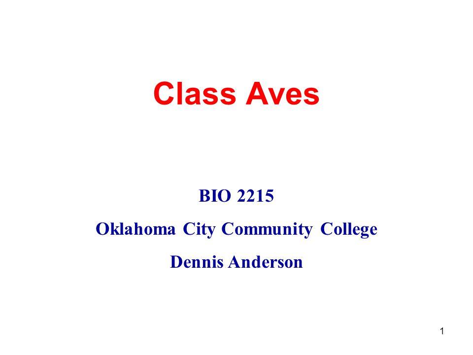 1 Class Aves BIO 2215 Oklahoma City Community College Dennis Anderson