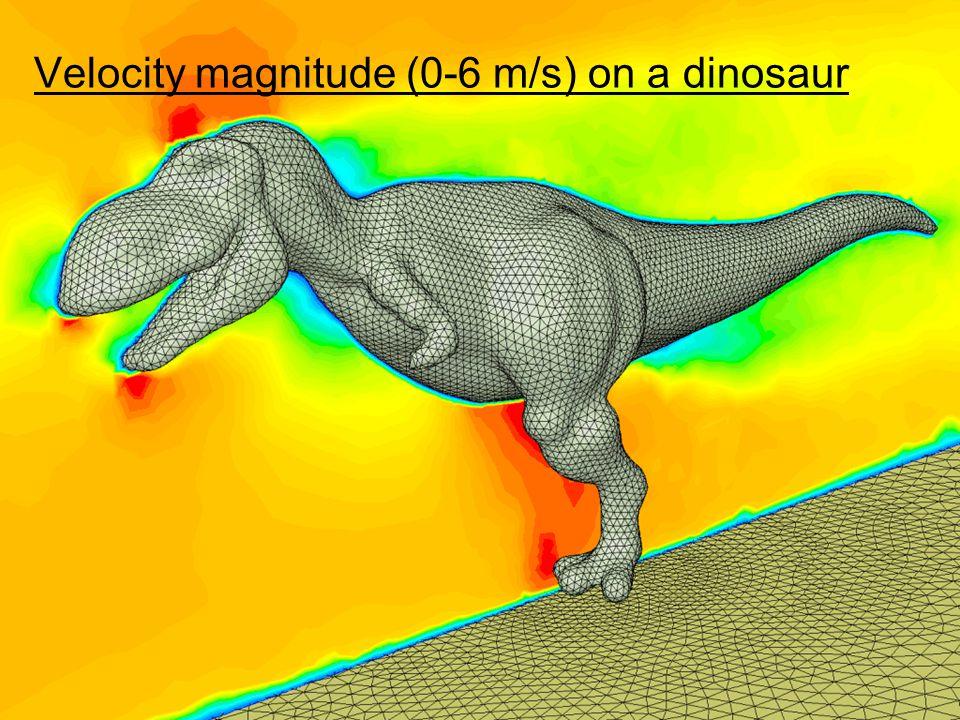26 Velocity magnitude (0-6 m/s) on a dinosaur