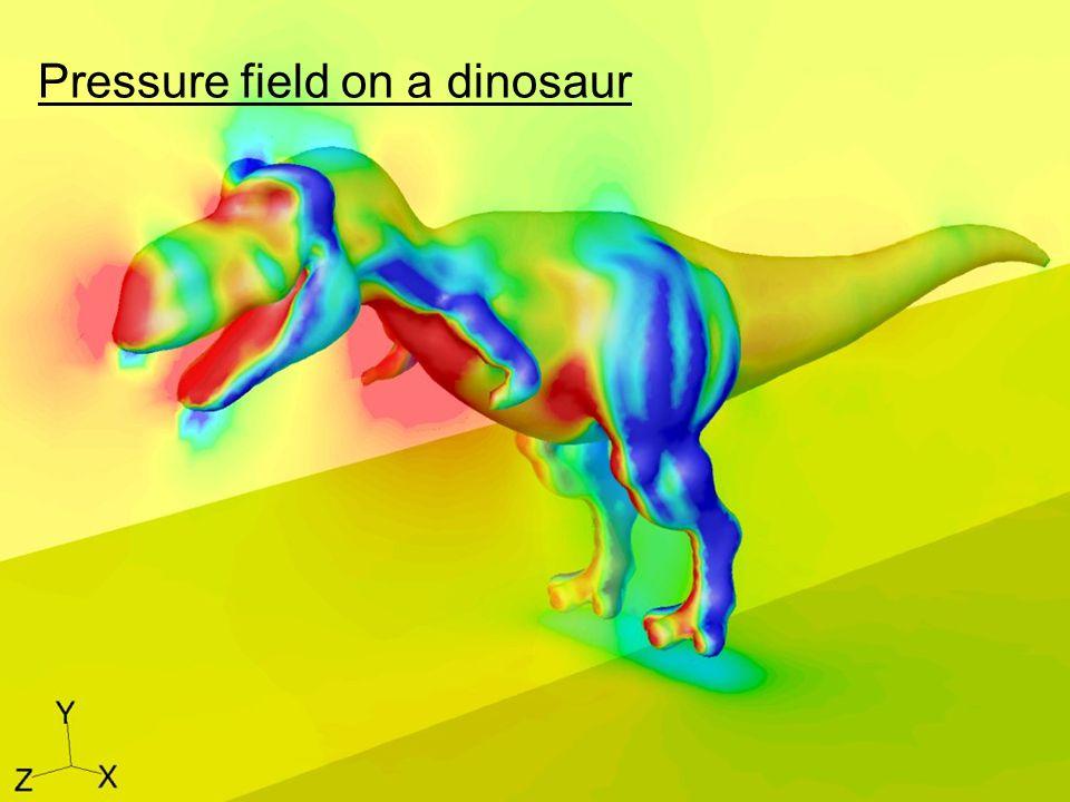 28 Pressure field on a dinosaur