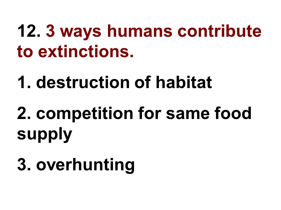 12. 3 ways humans contribute to extinctions. 1. destruction of habitat 2. competition for same food supply 3. overhunting