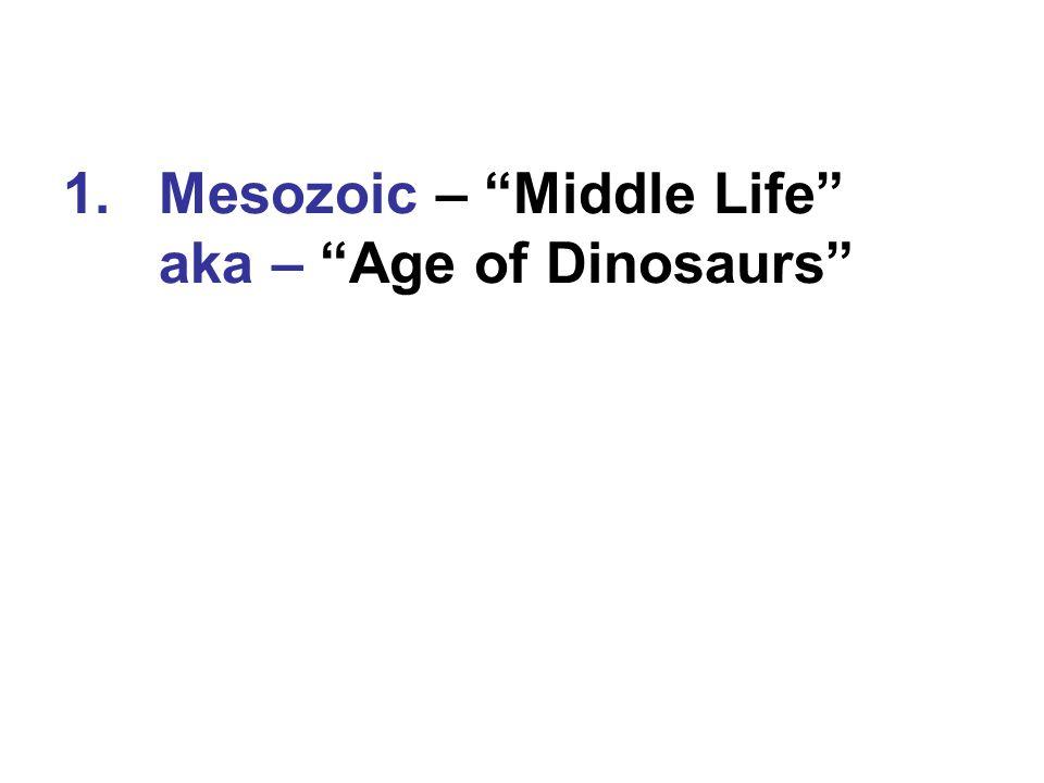 "1.Mesozoic – ""Middle Life"" aka – ""Age of Dinosaurs"""