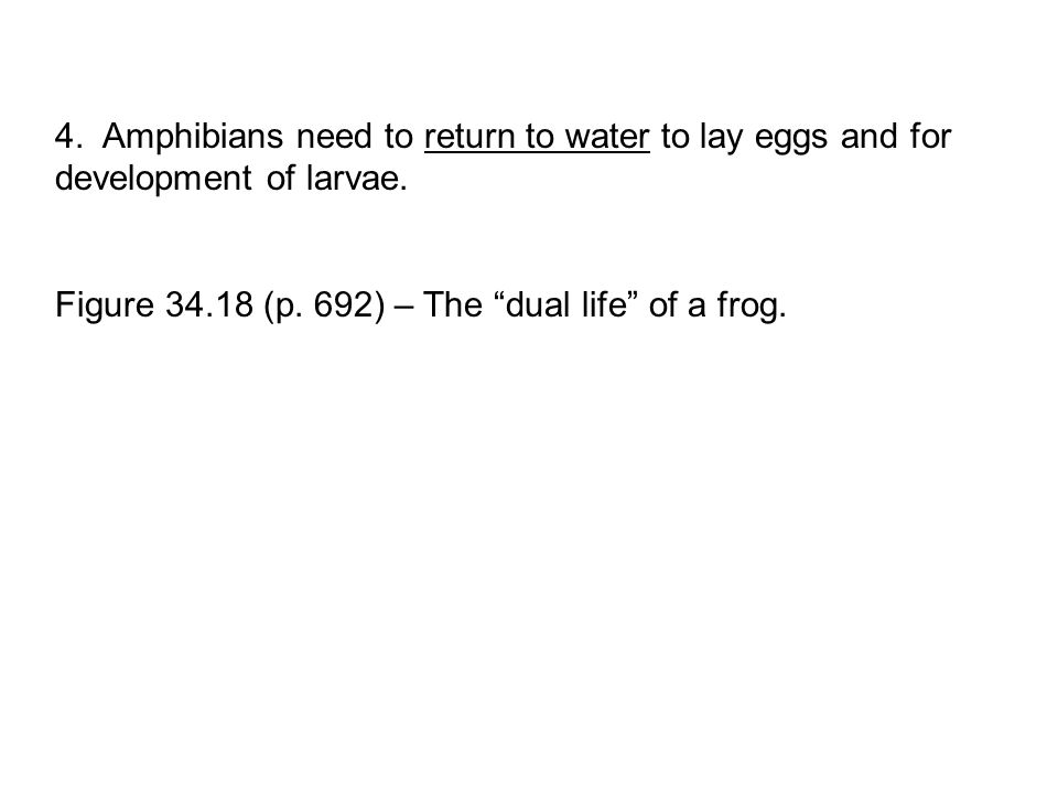 "4. Amphibians need to return to water to lay eggs and for development of larvae. Figure 34.18 (p. 692) – The ""dual life"" of a frog."