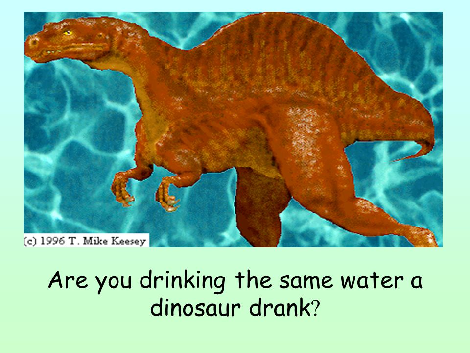 Are you drinking the same water a dinosaur drank ?