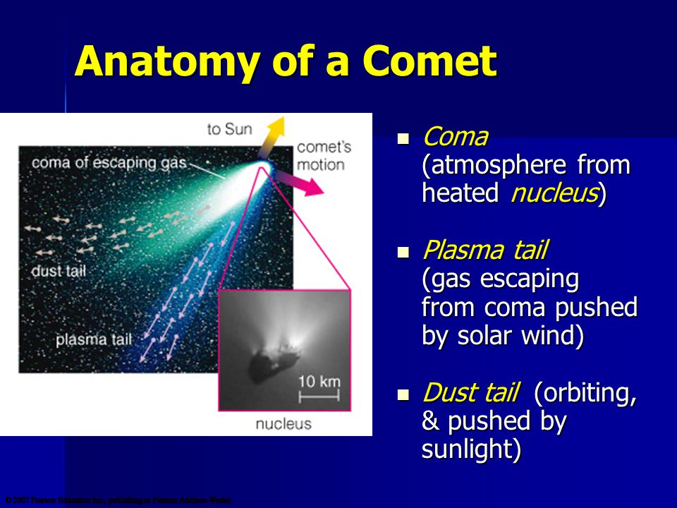 Anatomy of a Comet Coma (atmosphere from heated nucleus) Coma (atmosphere from heated nucleus) Plasma tail (gas escaping from coma pushed by solar wind) Plasma tail (gas escaping from coma pushed by solar wind) Dust tail (orbiting, & pushed by sunlight) Dust tail (orbiting, & pushed by sunlight)