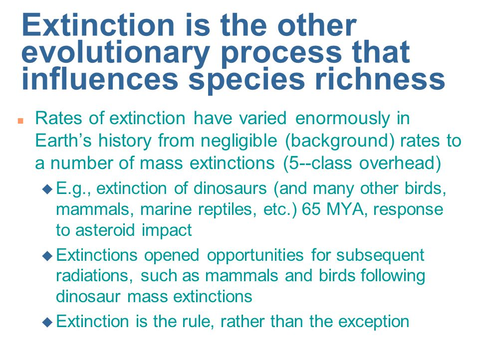 Extinction is the other evolutionary process that influences species richness n Rates of extinction have varied enormously in Earth's history from negligible (background) rates to a number of mass extinctions (5--class overhead) u E.g., extinction of dinosaurs (and many other birds, mammals, marine reptiles, etc.) 65 MYA, response to asteroid impact u Extinctions opened opportunities for subsequent radiations, such as mammals and birds following dinosaur mass extinctions u Extinction is the rule, rather than the exception