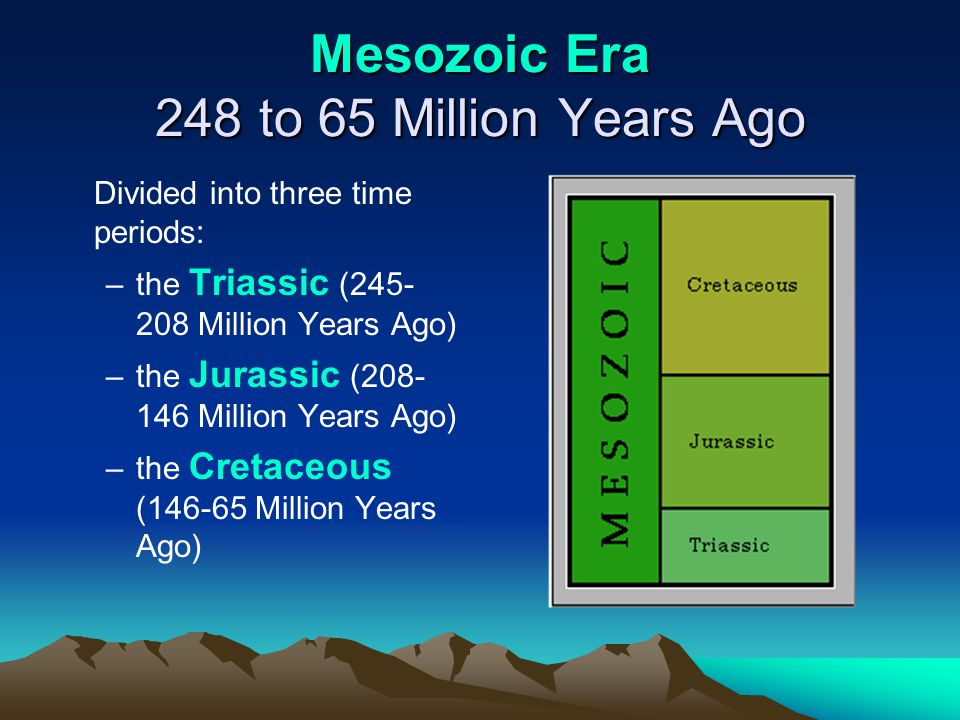Mesozoic Era 248 to 65 Million Years Ago Divided into three time periods: –the Triassic (245- 208 Million Years Ago) –the Jurassic (208- 146 Million Y