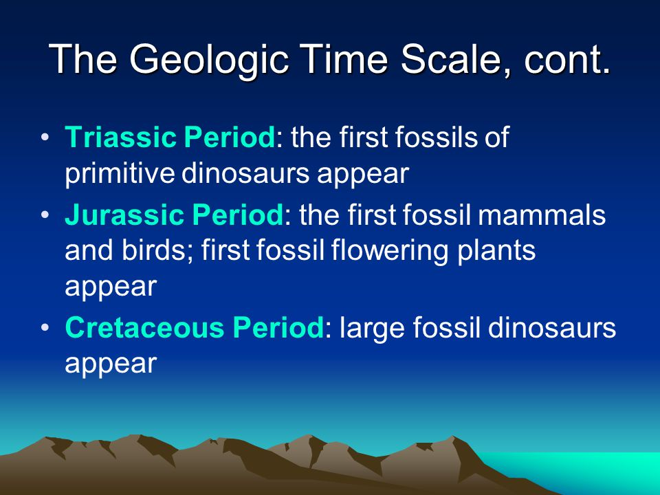 The Geologic Time Scale, cont. Triassic Period: the first fossils of primitive dinosaurs appear Jurassic Period: the first fossil mammals and birds; f