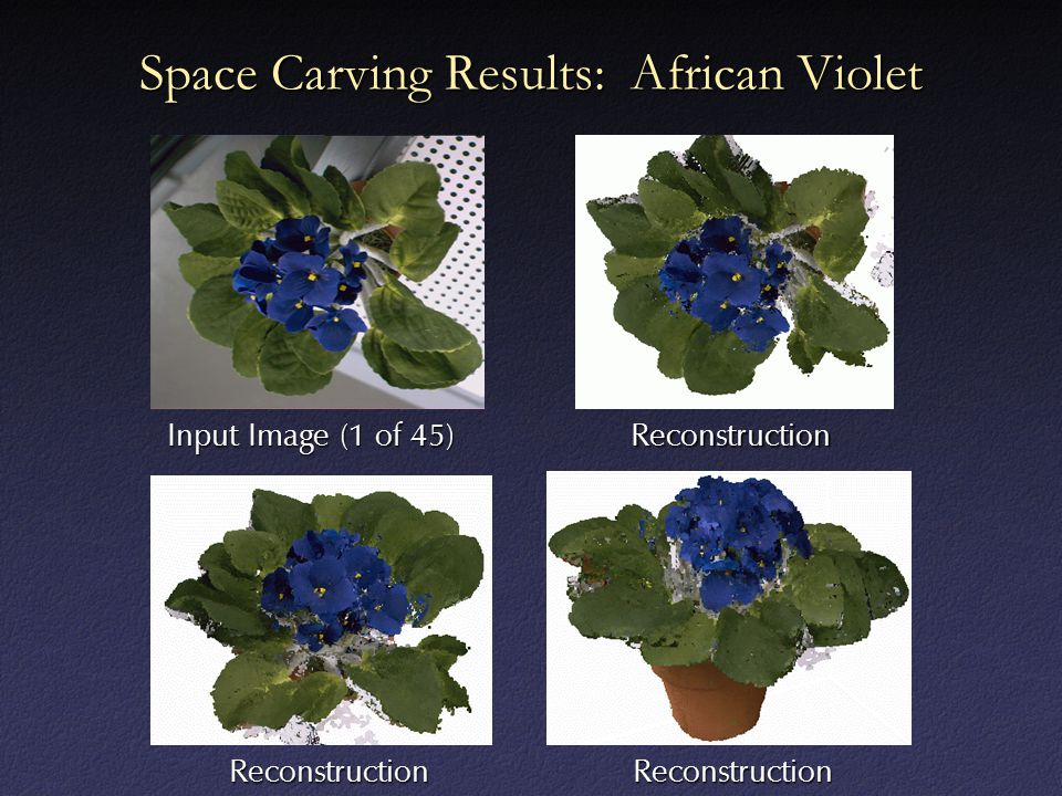 Space Carving Results: African Violet Input Image (1 of 45) Reconstruction ReconstructionReconstruction