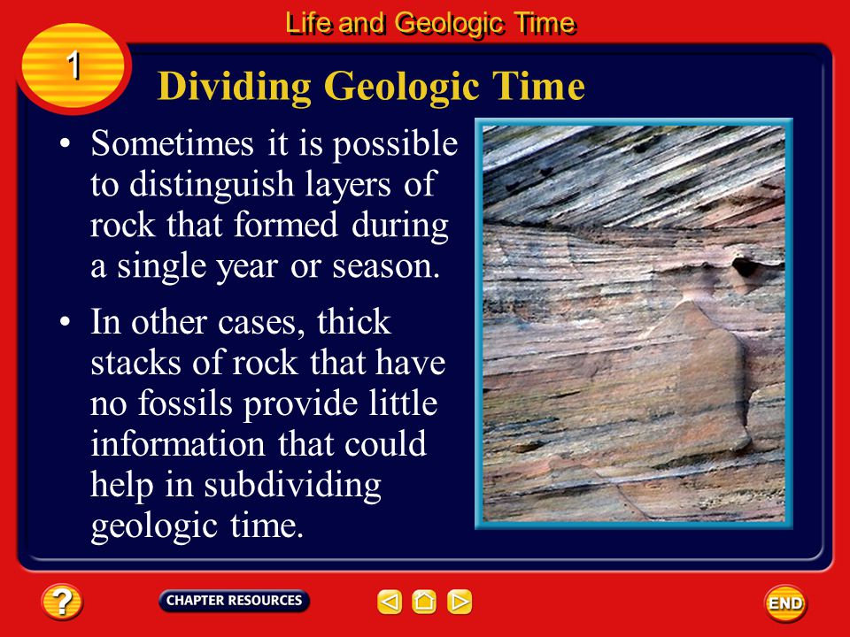 Periods are units of geologic time characterized by the types of life existing worldwide at the time.