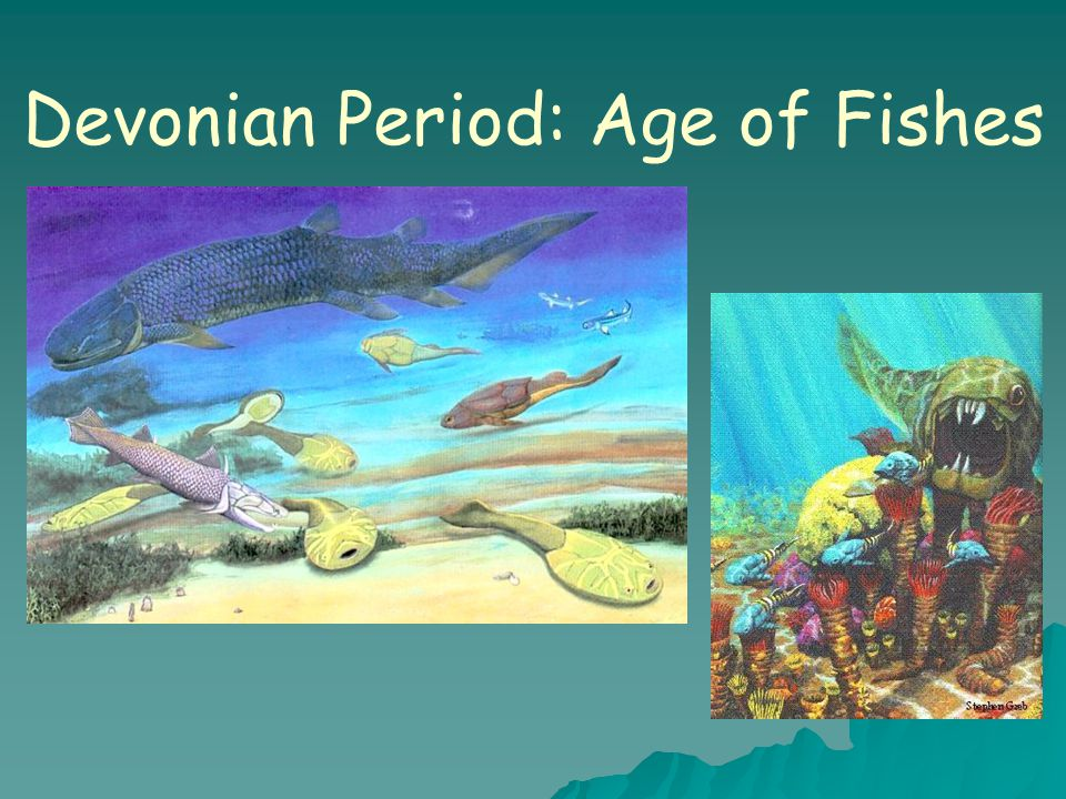 Devonian Period: Age of Fishes