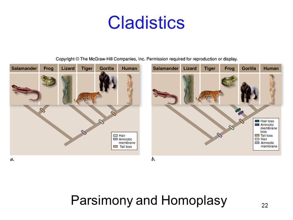 22 Parsimony and Homoplasy Cladistics