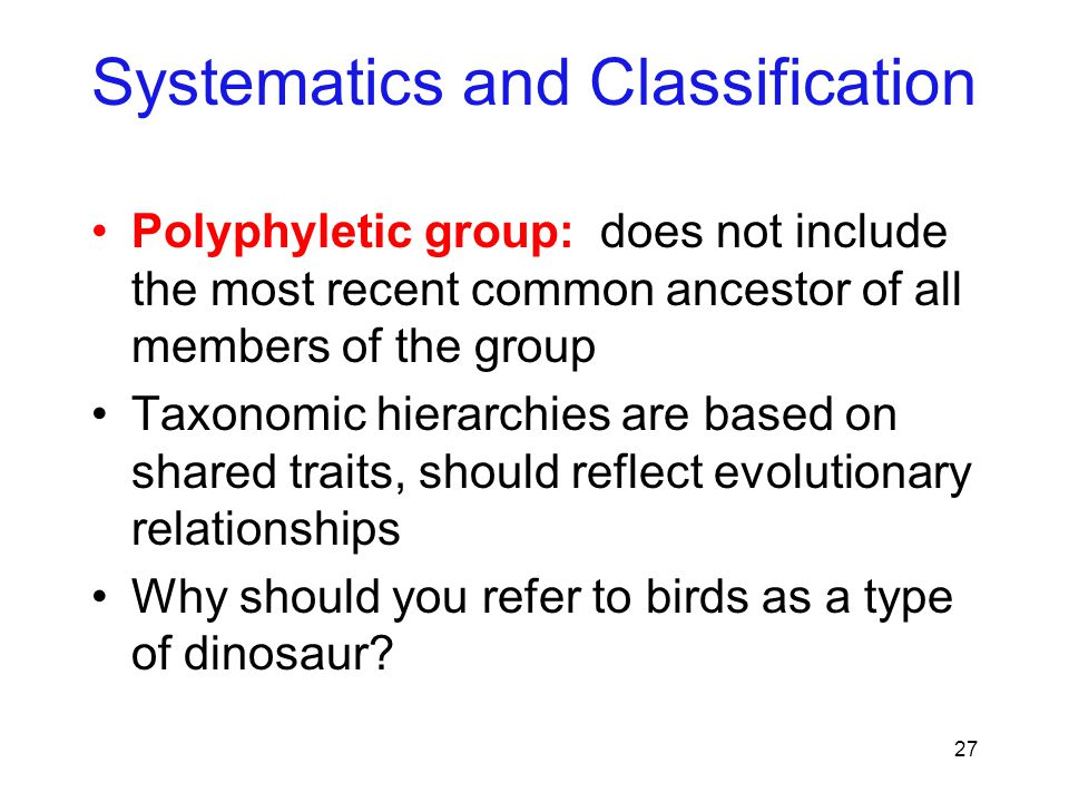 27 Polyphyletic group: does not include the most recent common ancestor of all members of the group Taxonomic hierarchies are based on shared traits,