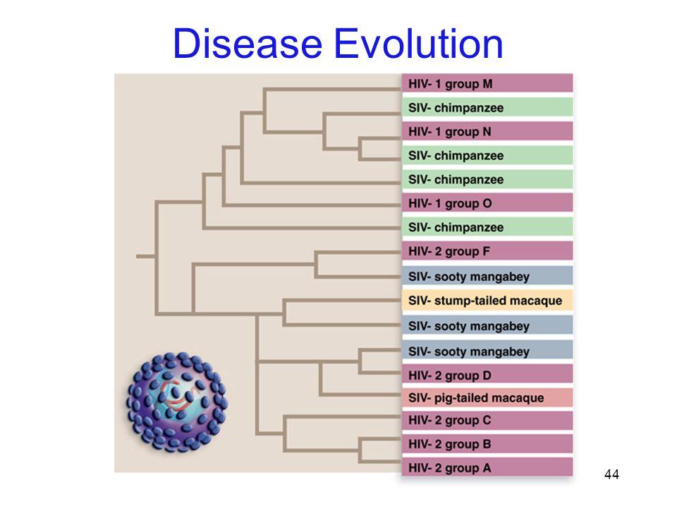 44 Disease Evolution