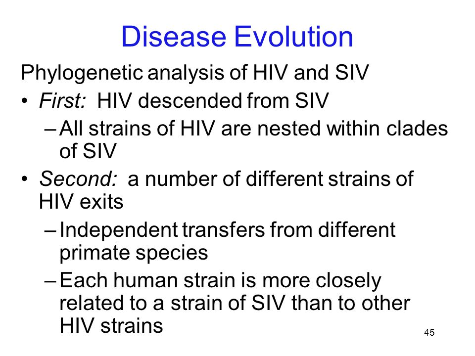 45 Phylogenetic analysis of HIV and SIV First: HIV descended from SIV –All strains of HIV are nested within clades of SIV Second: a number of differen