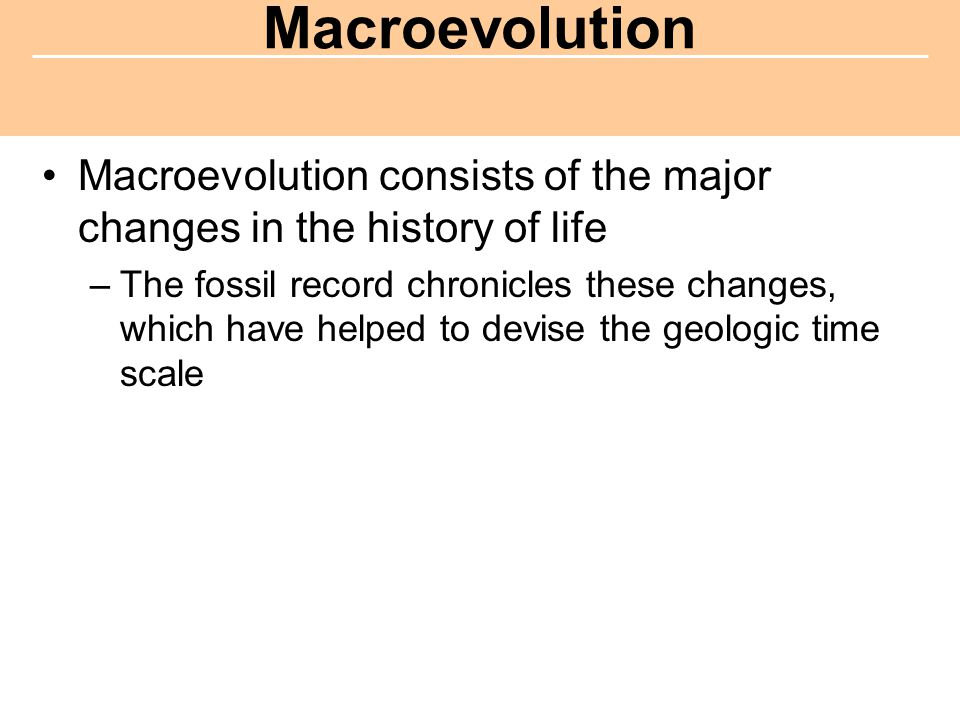 Macroevolution consists of the major changes in the history of life –The fossil record chronicles these changes, which have helped to devise the geologic time scale Macroevolution