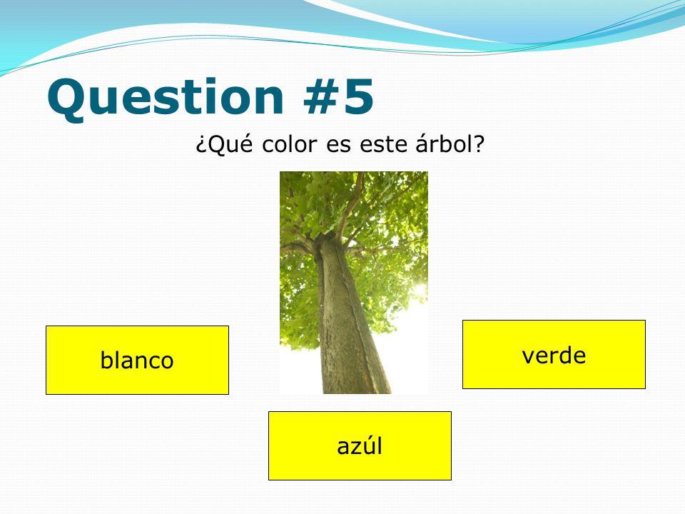 Question #4 Dibuja (draw) uno pollo. Answer
