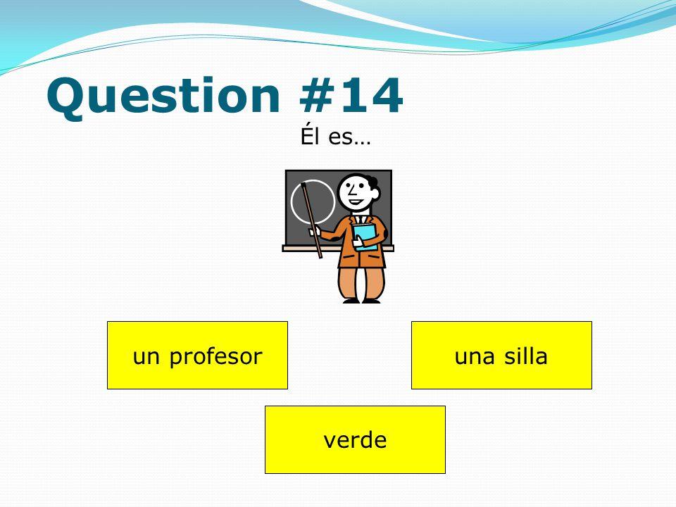 Question #13 Dibuja (draw) uno perro. Answer