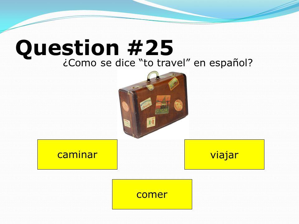 Question #24 Dibuja (draw) uno pájaro. Answer