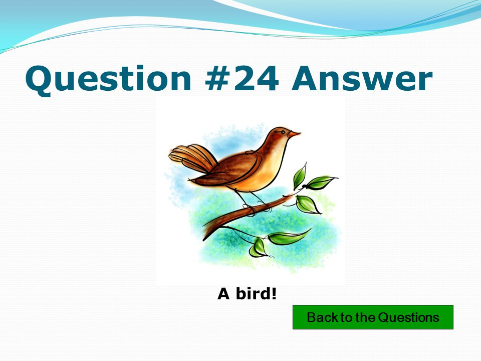 Question #19 Answer A tomato! Back to the Questions