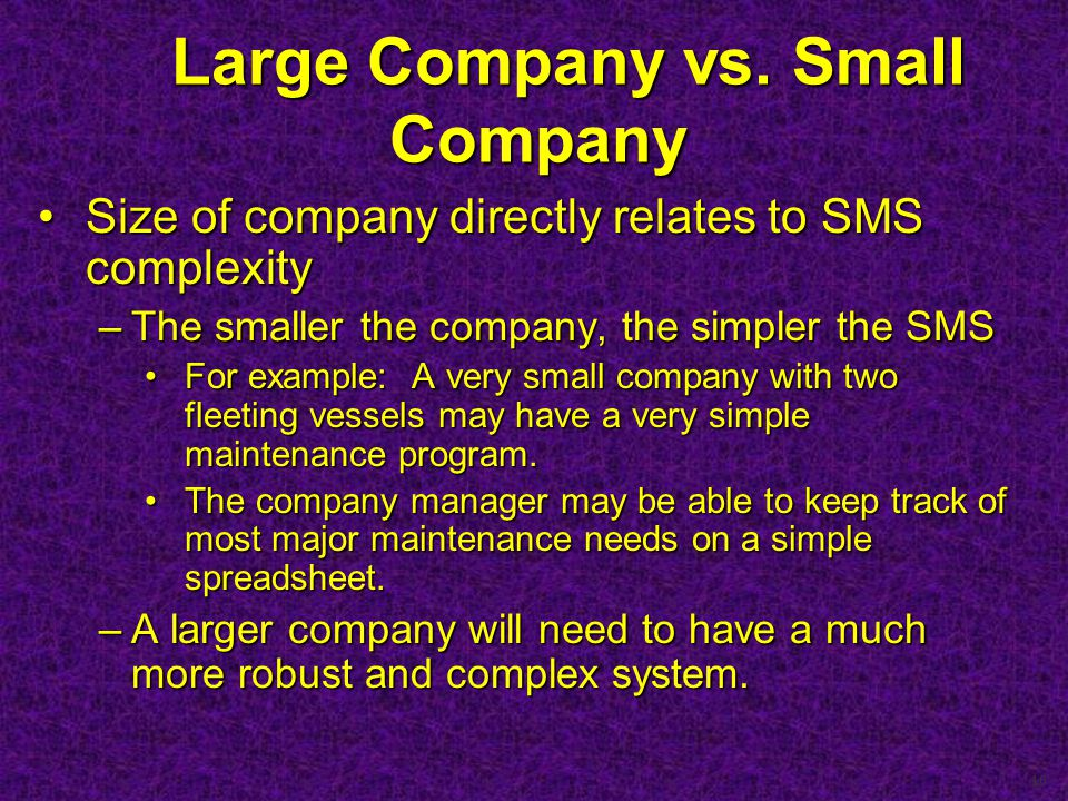 10 Large Company vs. Small Company Large Company vs.