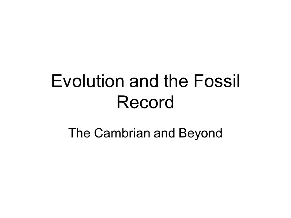 Evolution and the Fossil Record The Cambrian and Beyond
