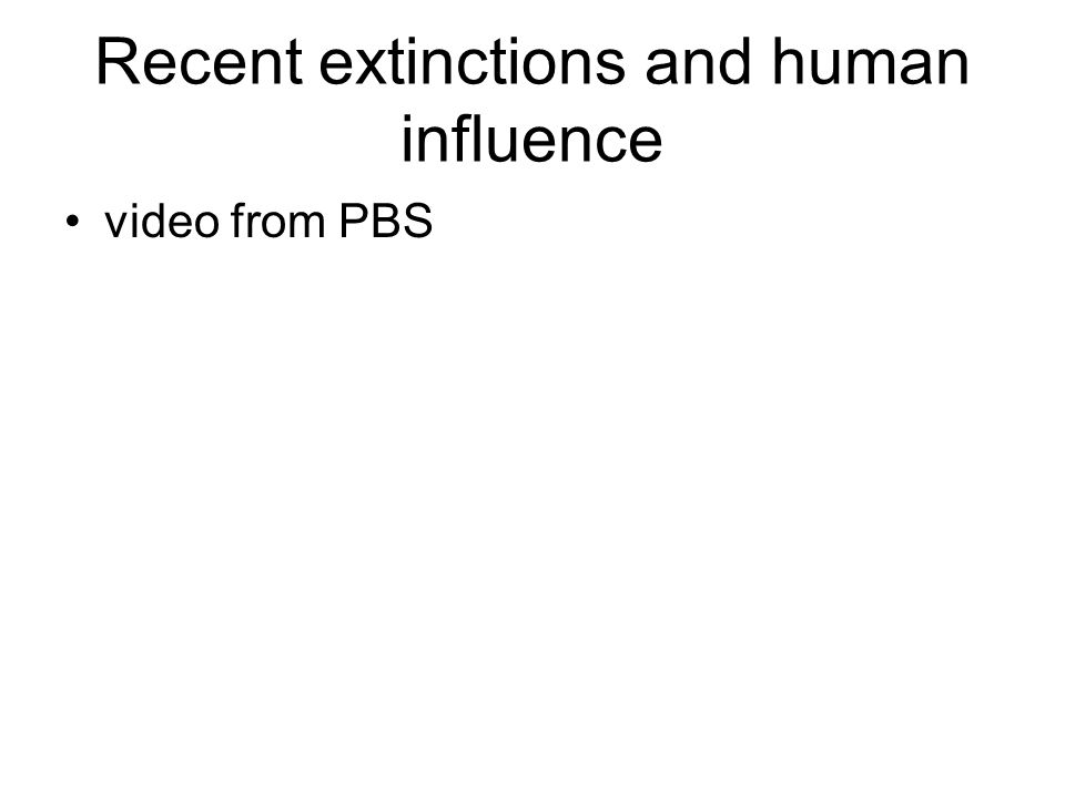 Recent extinctions and human influence video from PBS