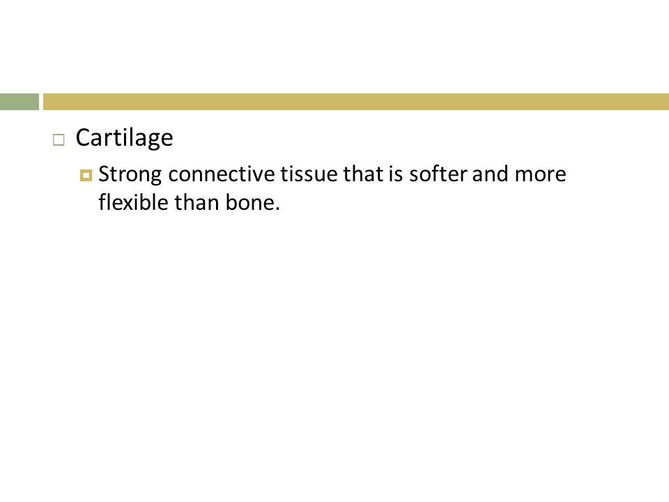  Cartilage  Strong connective tissue that is softer and more flexible than bone.
